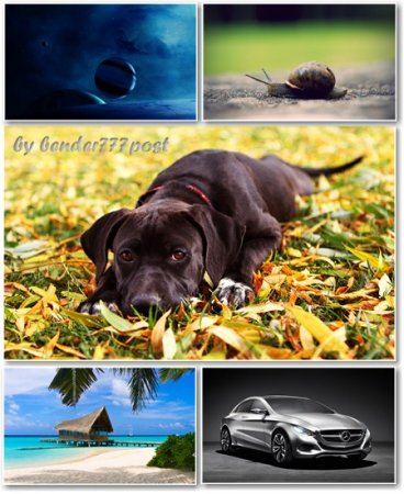 Best HD Wallpapers Pack №369