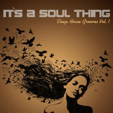 VA Its A Soul Thing Deep House Grooves Vol 1 [2013, MP3, 320 kbps]